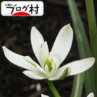 nazo_20200522074439b74.jpg