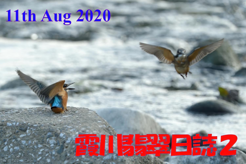 2020081101.jpg