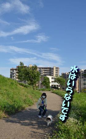 DSC_6569.jpg