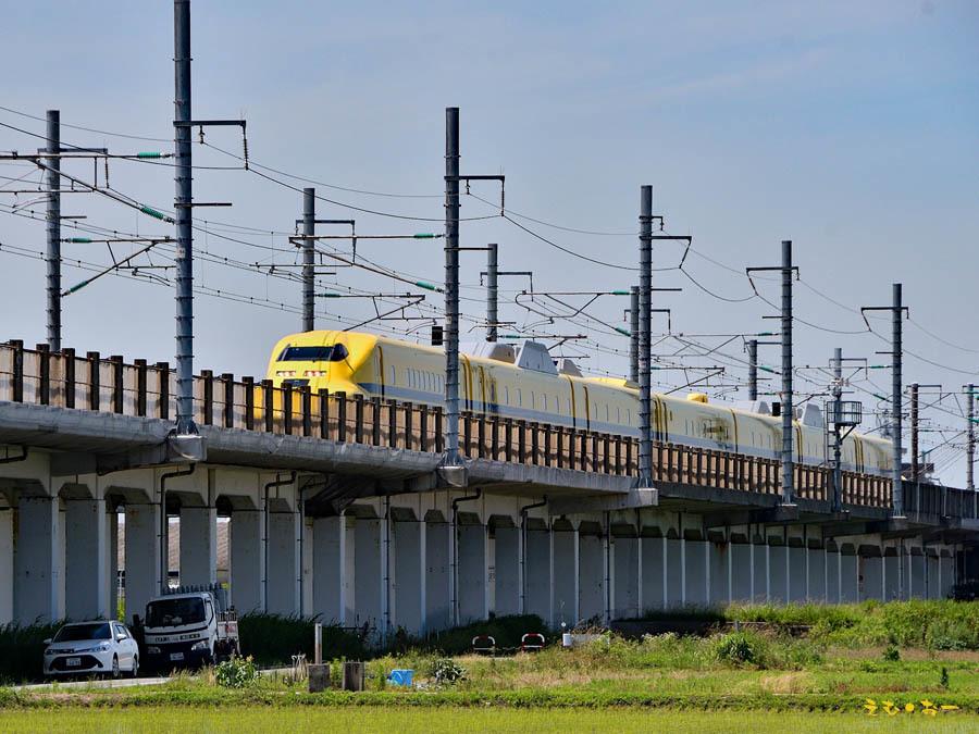 D Yellow-6b