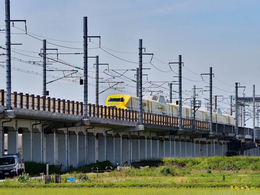 D.Yellow-5*b