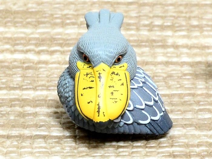 Bird-16-85bbb.jpg