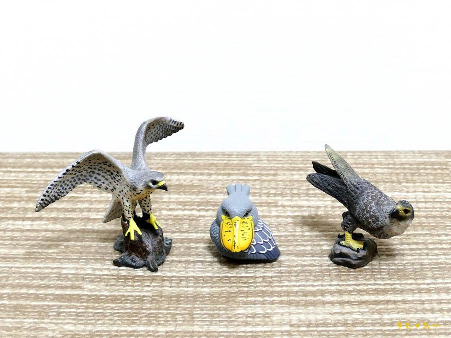 Bird-LUMIXb.jpg