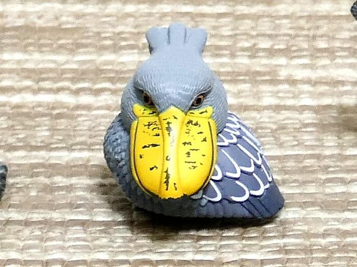 Bird-Lumixbbb.jpg