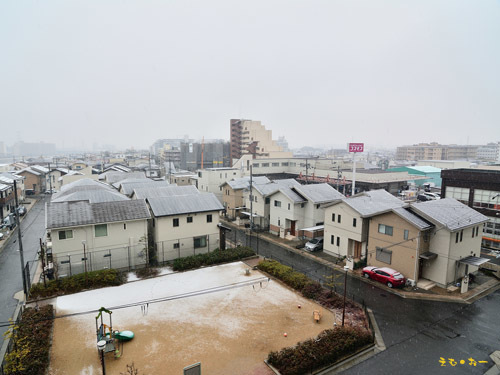 SNOW-11bbb.jpg