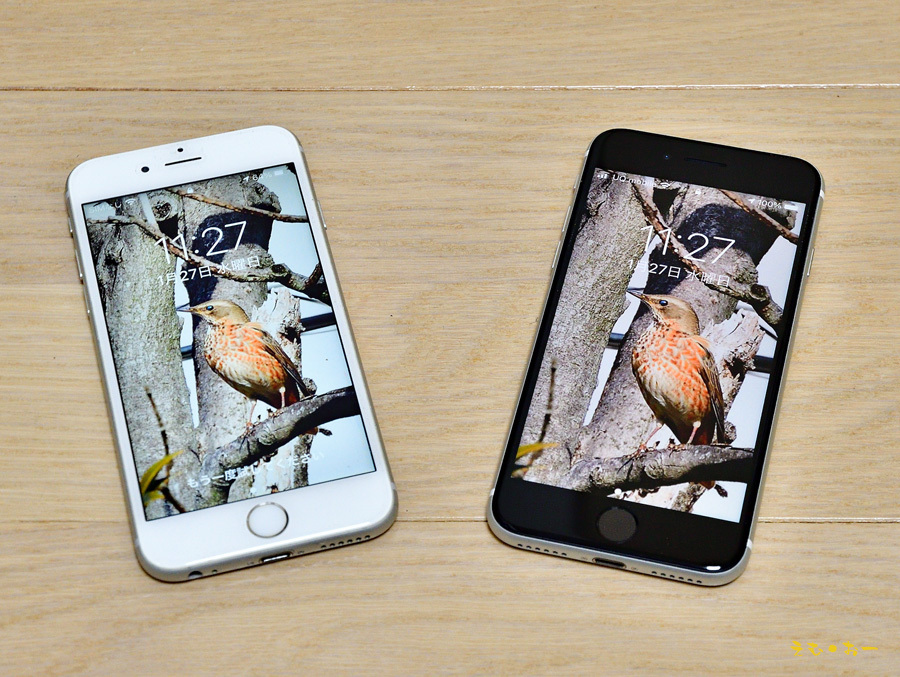 iPhone-6b.jpg