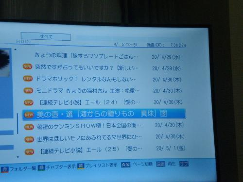 P4050120_convert_20200502161432.jpg