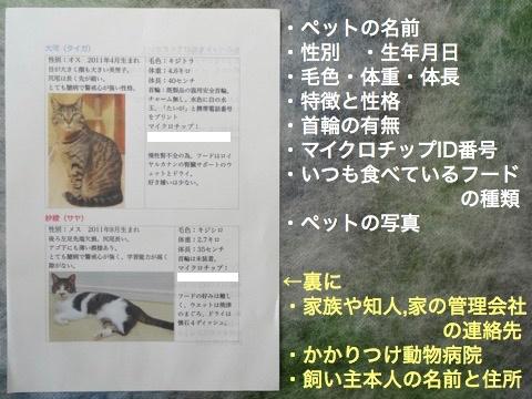170223-01ishihyoji