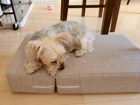 200614-1jiro