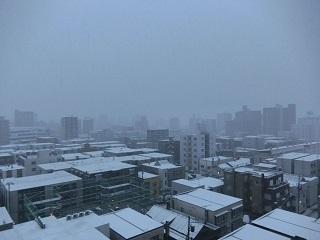 札幌1123雪