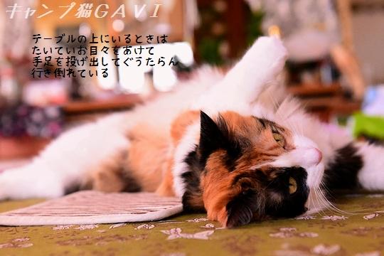 200813_4597.jpg