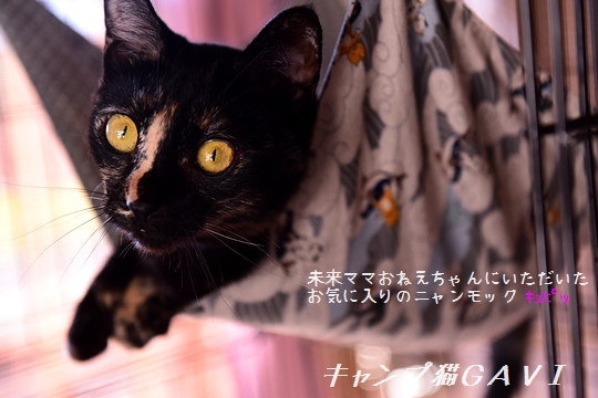 200814_4515.jpg