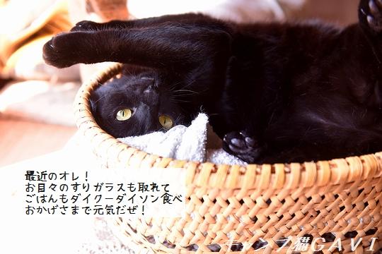 200815_4653.jpg