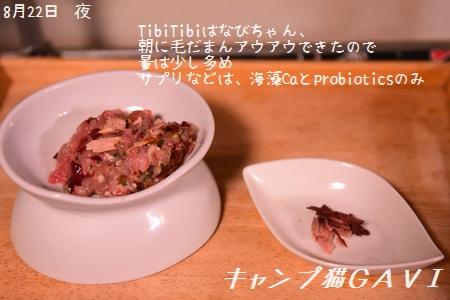 200822_4742.jpg