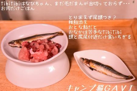 200827_4793.jpg