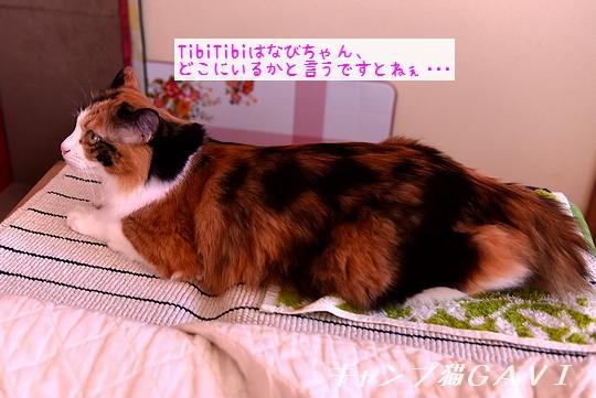 200906_4904.jpg