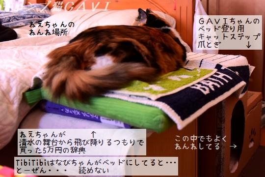 200906_4908.jpg