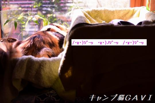 200908_4934.jpg