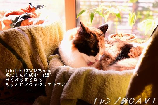 200908_4972.jpg