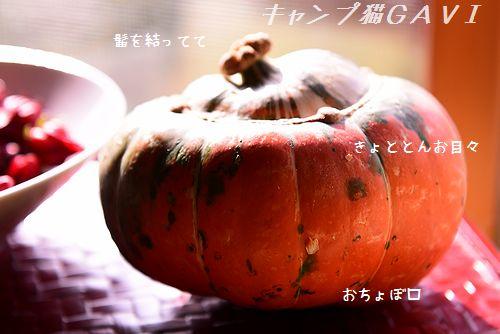 2009_5300.jpg