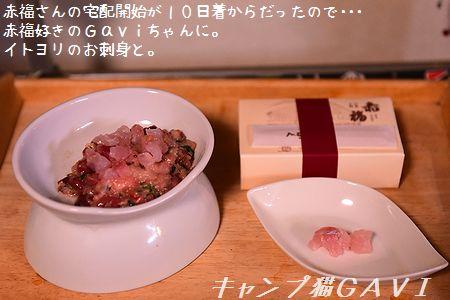 201010_5879.jpg