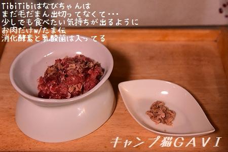 201013_5023.jpg