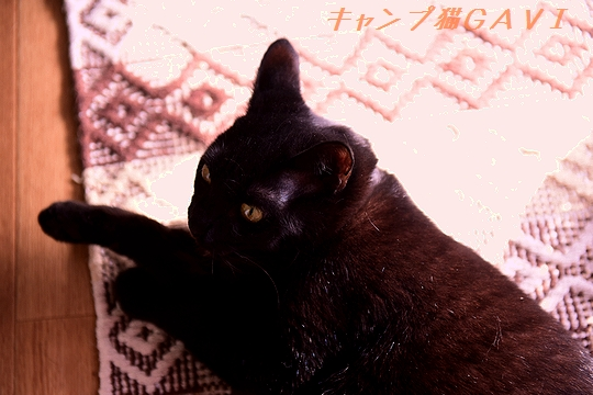 201021_6315.jpg