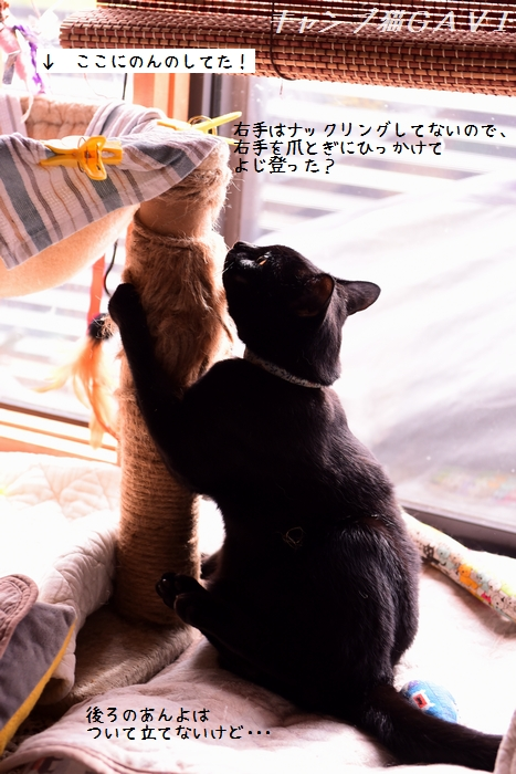 201109_7012a.jpg