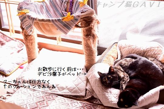 201112_7194.jpg