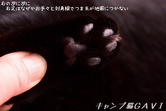 201124_7490.jpg