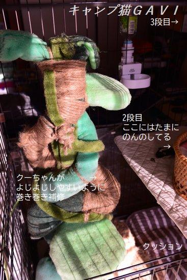 201206_8449.jpg