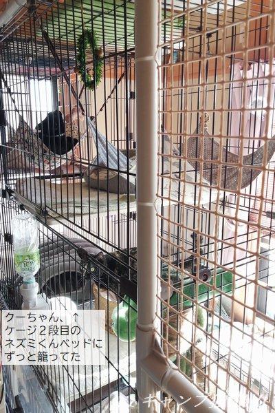 201208_094315.jpg