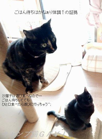 201213_083516.jpg
