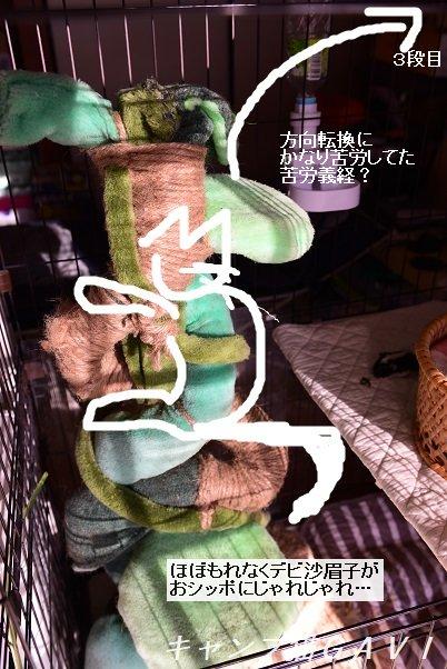 2012_8449.jpg
