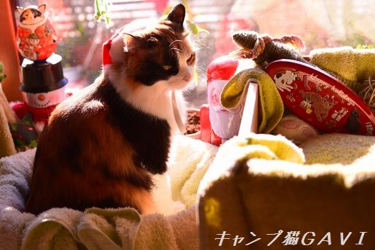 2012_9038.jpg
