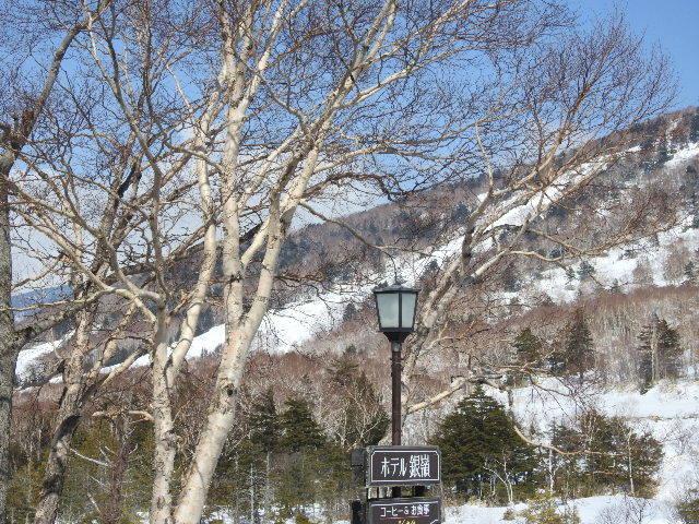 中央エリア営業終了のお知らせ|志賀高原 ホテル銀嶺(ぎんれい) Blog|
