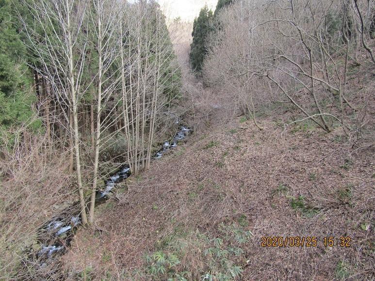 青秋林道に続く道1
