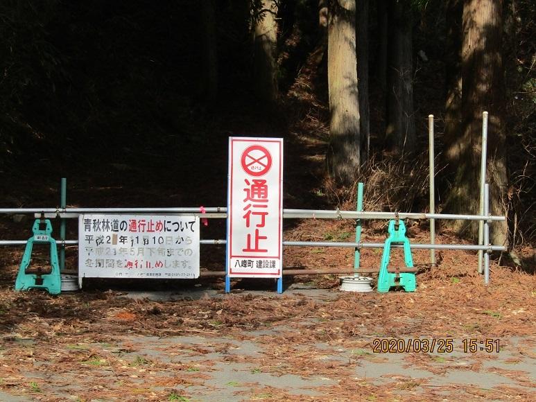 青秋林道に続く道10