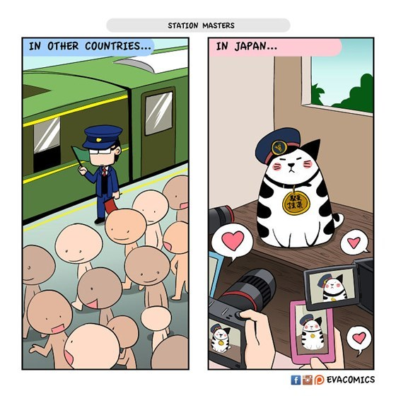 Cultural Differences04