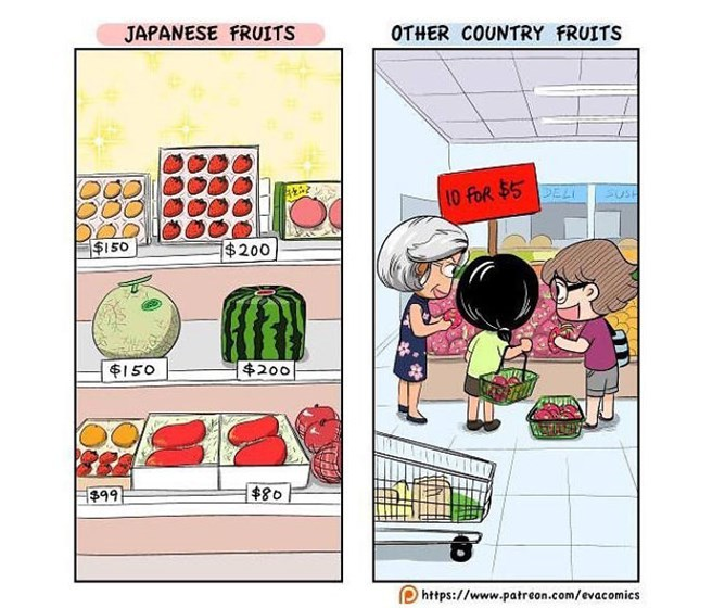 Cultural Differences09