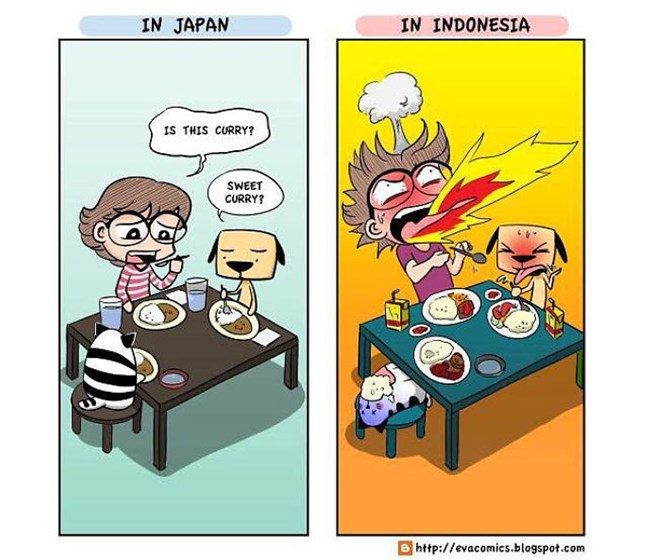 Cultural Differences13