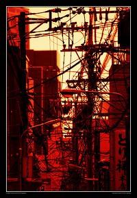 wire1101_04.jpg