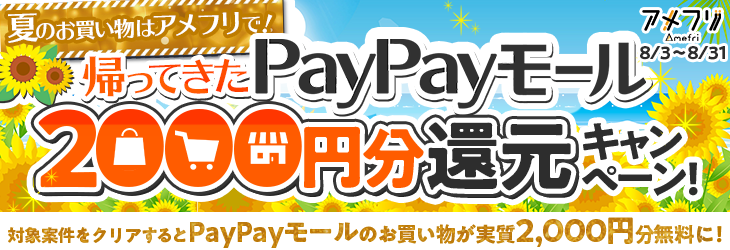 bnr_2008paypay_w730.png