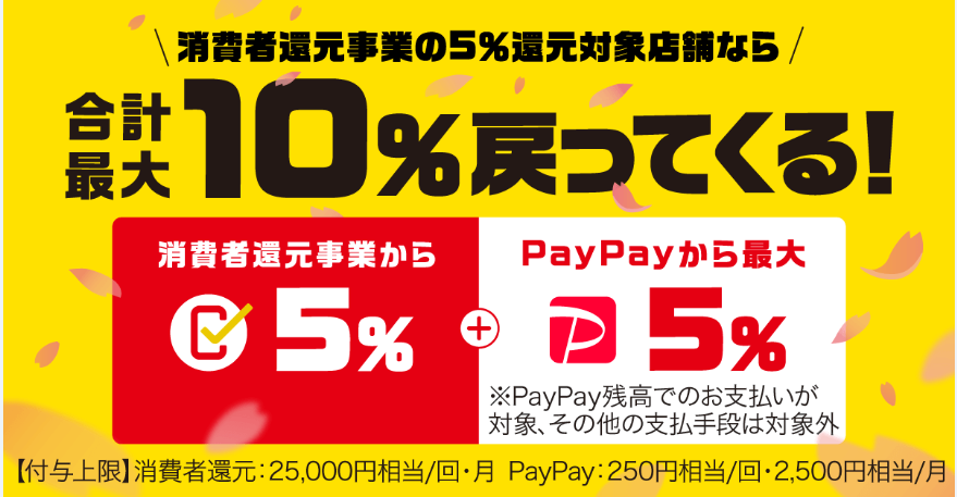 paypay10pkg2041.png