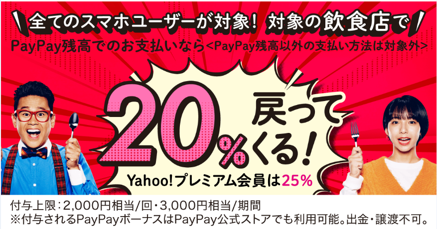 paypay20pkgist.png
