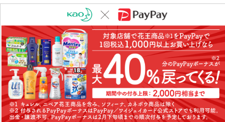 paypaykao40pkg2012.png
