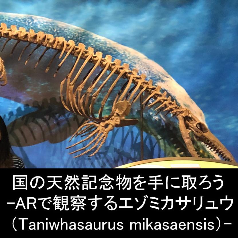 どこ博講演_国の天然記念物を手に取ろう -ARで観察するエゾミカサリュウ(Taniwhasaurus mikasaensis)-2