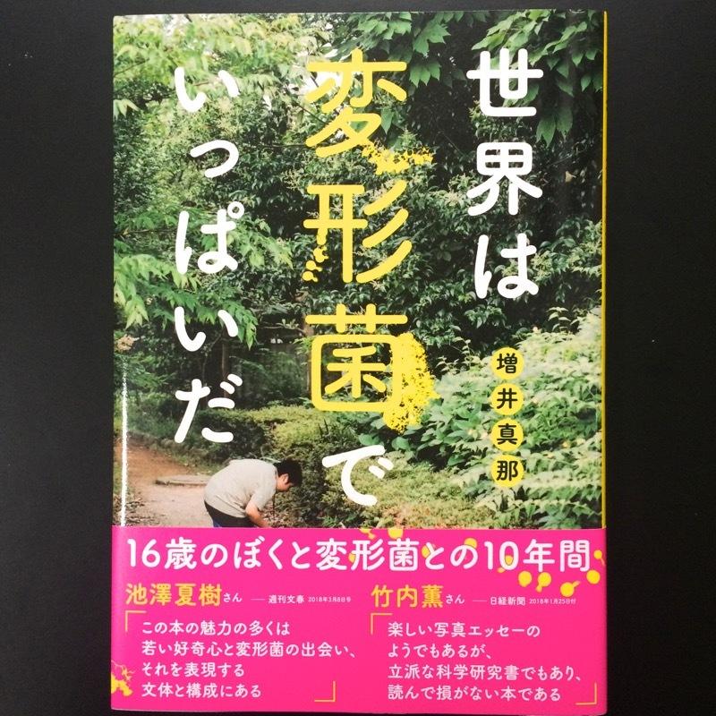どこ博講演_増井真那「変形菌(真性粘菌)の世界」 (10)