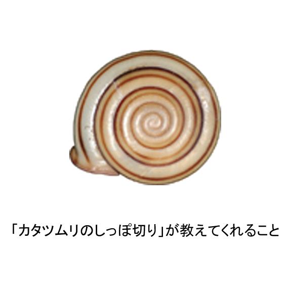 どこ博講演_細 将貴_logo