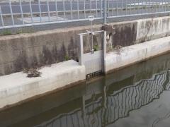 8分水ゲート